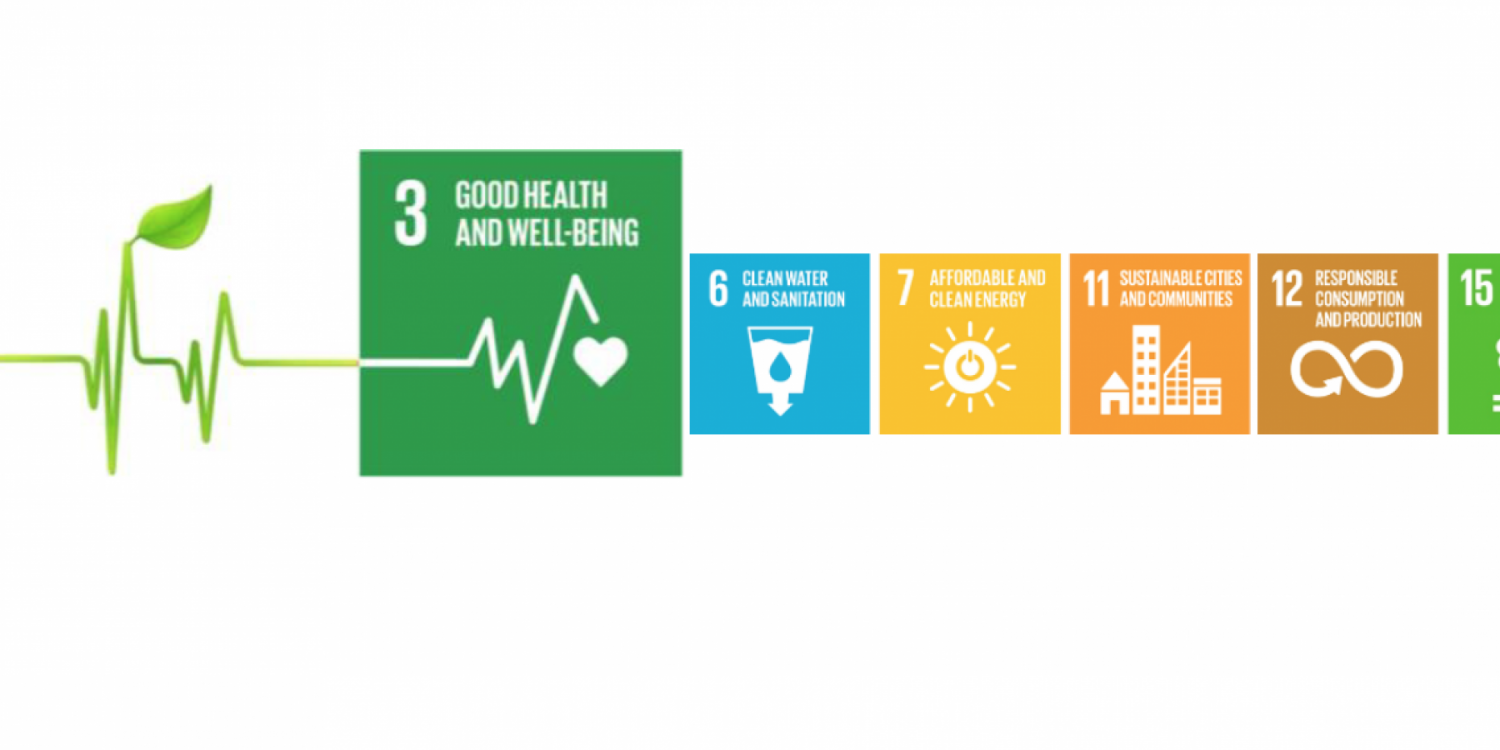 High-Level Political Forum features broad view of health, NCDs and SDGs