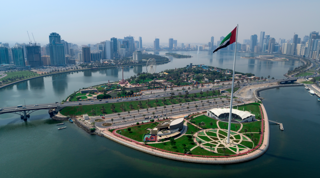 Third Global NCD Alliance Forum to 'Bridge the gap' in Sharjah in 2020