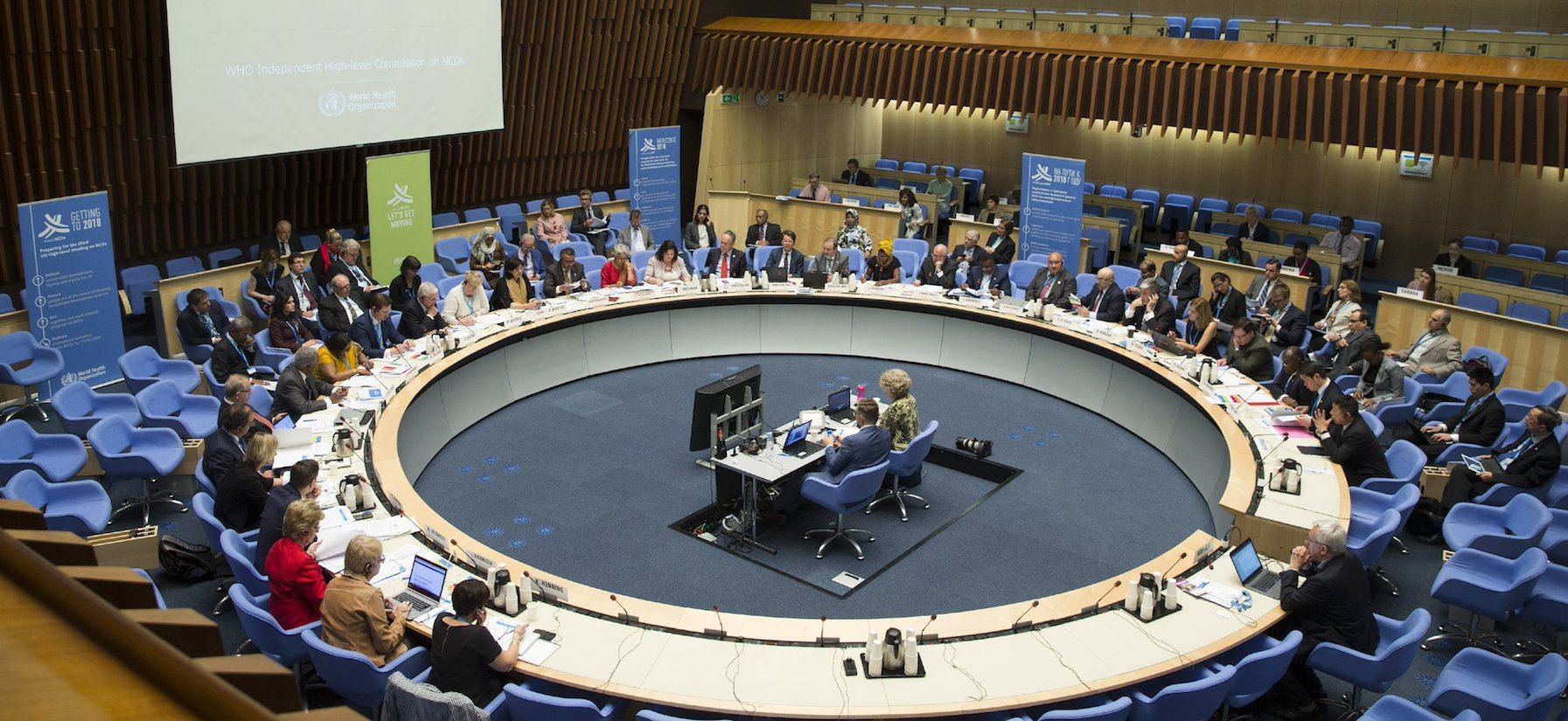 Consultation now open: preliminary report of WHO High-Level Commission