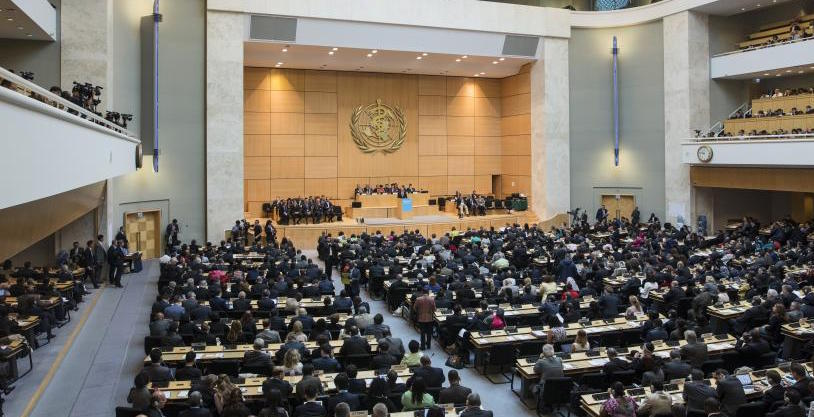 NCDs front & centre at WHA: A summary, and invitation to our next webinar!
