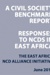 A civil society benchmark report: Responses to NCDs in East Africa