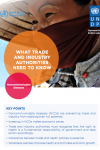 Sectoral Brief: Trade and Industry