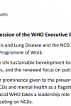 Statement at the Special Session of the WHO Executive Board, November 22-23