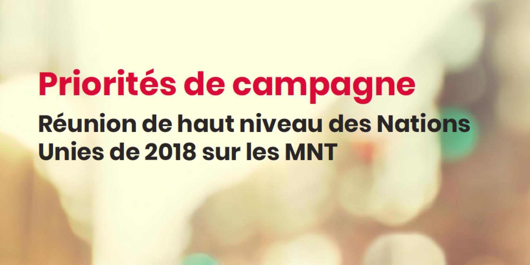 Priorités de campagne - RHN de l ONU de 2018 sur les MNT   NCD Alliance 75fc765d7a20