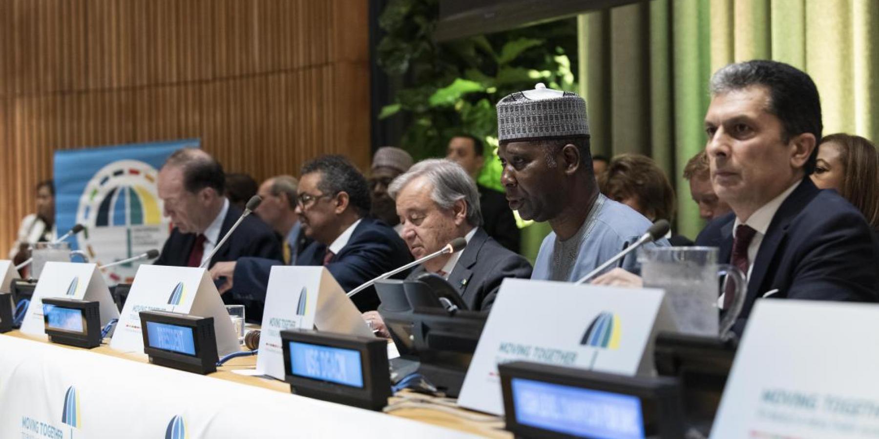 UN High-level Meeting on Universal Health Coverage, 23 September 2019, New York, US © UN Photo/Kim Haughton
