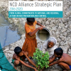 Important milestones in NCD prevention and control – but no room for complacency