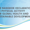 WHO Executive Board endorses development of a WHO global action plan on revitalising physical activity for health