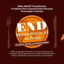 New SMART Nutrition Brief