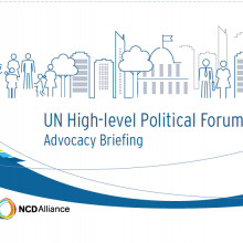 2017 UN High-level Political Forum Advocacy Briefing