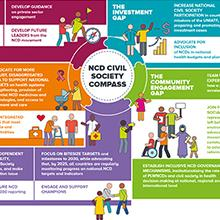 Bridging the Gap - NCD Civil Society Compass