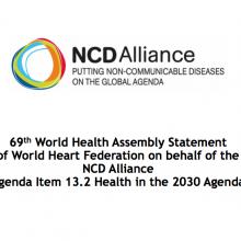 WHA69 Agenda Item 13.2 Health in the 2030 Agenda