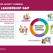 NCD Civil Society Compass - The leadership gap