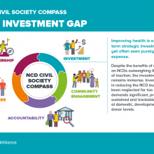 NCD Civil Society Compass - The investment gap