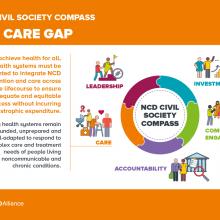 NCD Civil Society Compass - The care gap