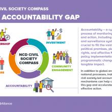 NCD Civil Society Compass - The accountability gap