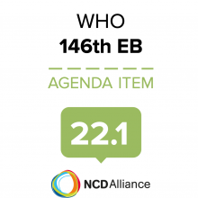 146th WHO EB Statement on Item 22.1 Involvement of non State actors in WHO governing bodies