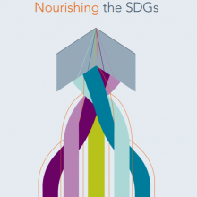 Nourishing the SDGs