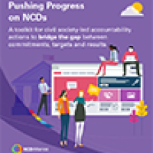 Pushing for Progress - Accountability Toolkit