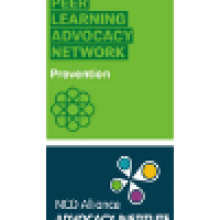 PLAN on NCD Prevention / Advocacy Institute - Workshop on alcohol advocacy