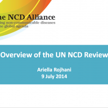 NCD Alliance UN Review 2014 Civil Society Briefing Slides