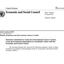 NCD Alliance ECOSOC Statement 2013