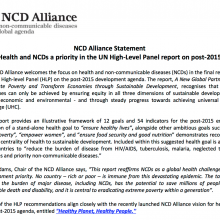 NCD Alliance Statement on UNHLP Report