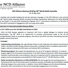 NCD Alliance Advocacy Briefing