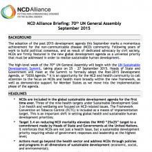 UN Summit 2015: Advocacy brief