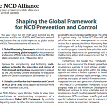 Shaping the Global Framework for NCD Prevention and Control
