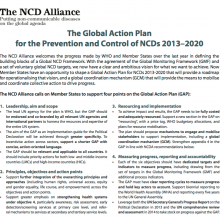 Proposal: The Global Action Plan for the Prevention and Control of NCDs 2013–2020