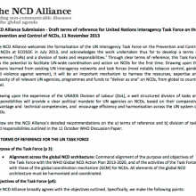 Submission: United Nations Interagency Task Force on the Prevention and Control of NCDs