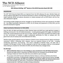 Advocacy briefing: WHO Executive Board 134
