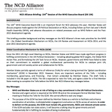 Advocacy briefing: WHO Executive Board 134
