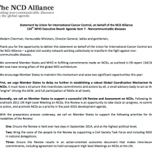 Statement on NCD Agenda Item