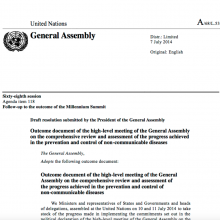 Final Outcome Document UN Review 2014