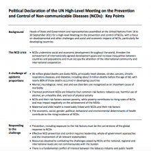 Political Declaration of the UN High-Level Meeting on the Prevention and Control of Non-communicable Diseases: Key Points