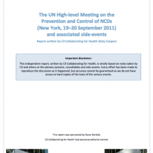 UN High Level Meeting on NCDs - Report