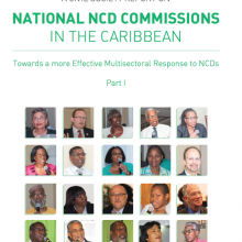 A Civil Society Report on National NCD Commissions in the Caribbean