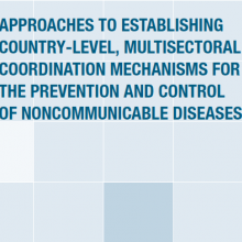 Approaches to establishing country-level, multisectoral coordination mechanisms for the prevention and control of NCDs