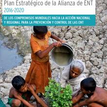 Plan Estratégico de la Alianza de ENT 2016-2020