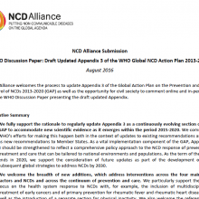 NCD Alliance comments on the Updated Appendix 3