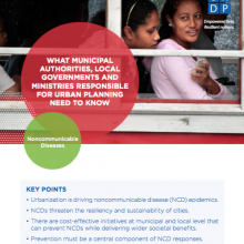 Sectoral Brief: Local Governments