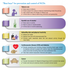 """Advocacy Docket: What are the """"best buys"""" for prevention and control of NCD?"""