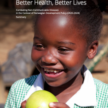 Better Health, Better Lives - Norway's development strategy on NCDs