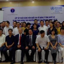 Avances hacia la RAN de la ONU sobre incidencia para las ENT y control del alcohol en Vietnam