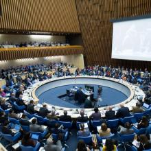 Photo of the 142nd meeting of the WHO Executive Board