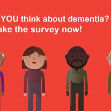 Alzheimer's Disease International - Global Survey