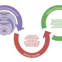 Global NCD Framework Campaign