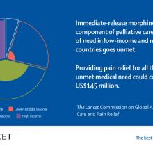 Graphic showing how the unmet need for pain relief is centred on low- and mid-income countries