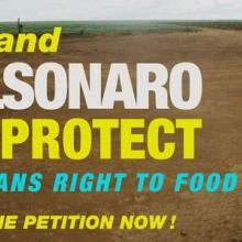 Petition: Restore full powers of Brazilian food and nutrition body